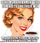 i like my government like i like my men weakened to point of only able to perform basic functions